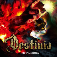 Nozomu Wakai Destinia - Metal Souls Music Review