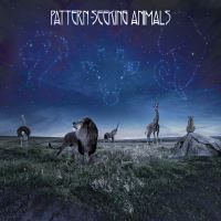 Pattern-Seeking Animals 2019 Debut Album Music Review